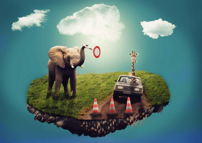 Träume mit Elefant und Giraffe im Volvo